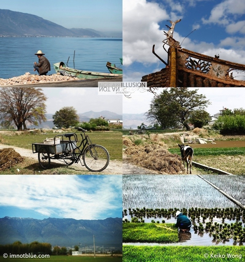 life in Dali, depth of field yunnan travels, along the tea and horse caravan, country living 大理茶馬古道生活,蒼山洱海田園生活 images of Erhai lake, dali, country living