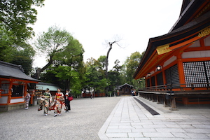 japanese shrine with red 日本寺庙