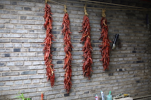hanging chillies