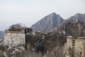 spring in the greatwall China 长城春