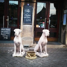 guardians of hamburg harbor - dogs in front of bar 酒吧外的狗雕像-汉堡仓库街
